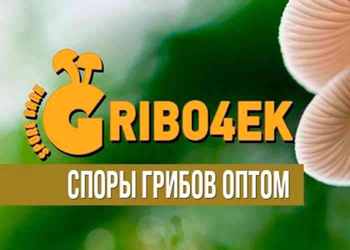 Споры грибов оптом - Gribo4ek