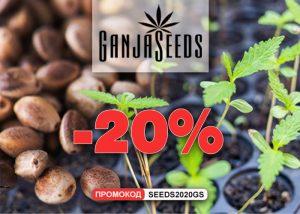 Распродажа семян конопли и споровых отпечатков от GanjaSeeds