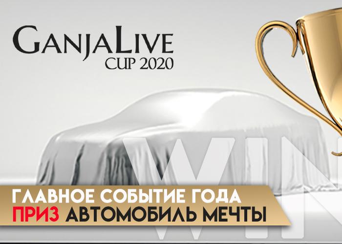 Суперприз – автомобиль. Лучшему коноплеводу GanjaLive Cup 2020!